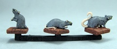 Giant Rats (3)
