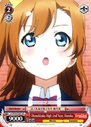 Otonokizaka High 2nd Year, Honoka - LL/W24-TE05 - TD
