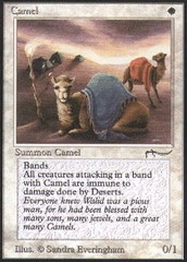 Camel on Channel Fireball