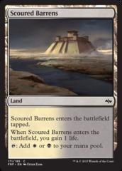 Scoured Barrens - Foil