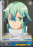 Basic Knowledge of Guns, Sinon - SAO/SE23-E25 - C