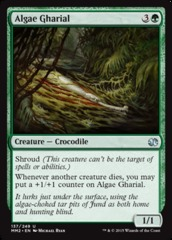 Algae Gharial on Channel Fireball