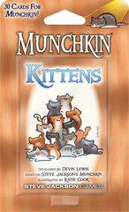 Munchkin Kittens