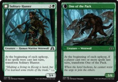 Solitary Hunter // One of the Pack