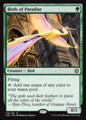 Birds of Paradise on Channel Fireball