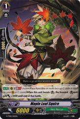 Maple Leaf Squire - G-TD12/012EN - TD