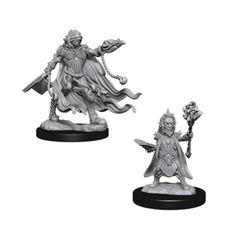 Pathfinder: Deep Cuts Unpainted Miniatures - Evil Wizards