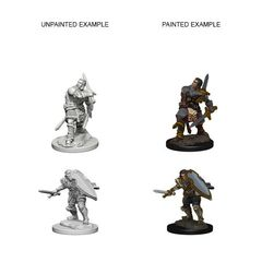 Dungeons And Dragons: Nolzur's Marvelous Unpainted Miniatures - Human Male Paladin