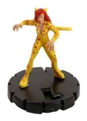 Cheetah (018)