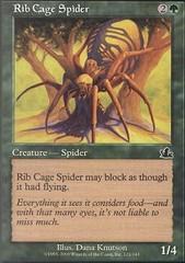 Rib Cage Spider - Foil