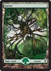 Forest (249) - Full Art - Foil