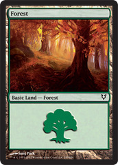 Forest (243) - Foil on Ideal808