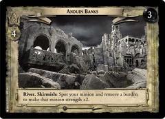 Anduin Banks - Foil