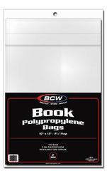 Book Bag 10 x 13