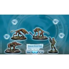 Antipode Assault Pack (280111-0044)