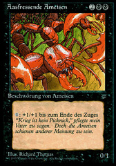 Carrion Ants (Aasfressende Ameisen)
