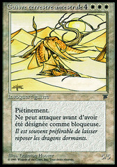 Elder Land Wurm (Guivre terrestre ancestrale)