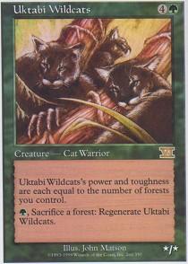 Uktabi Wildcats
