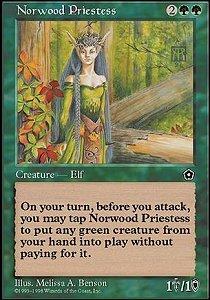 Norwood Priestess