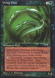 Whip Vine (3 Vines)