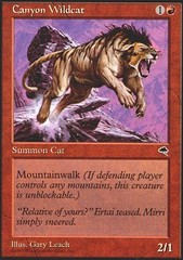 Canyon Wildcat on Channel Fireball