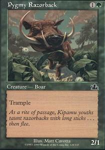Pygmy Razorback