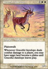 Graceful Antelope
