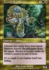 Anurid Brushhopper on Channel Fireball