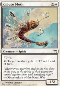 Kabuto Moth