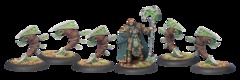 Druid Stoneward And Woldstalkers