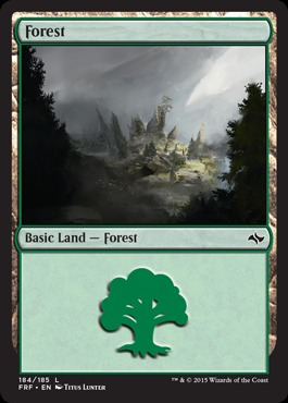 Forest (184/185)