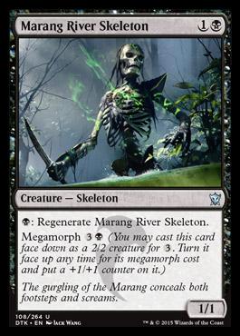 Marang River Skeleton
