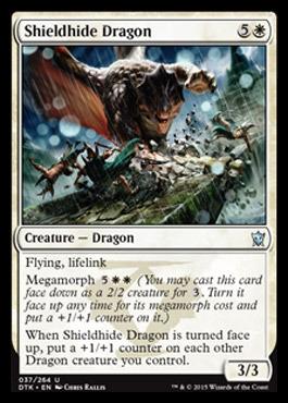 Shieldhide Dragon