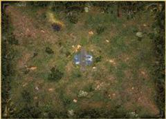 Mage Wars Straywood Playmat
