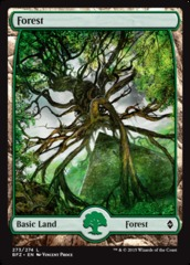 Basic Forest (273) (Full Art)
