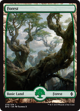Forest (Full Art) - Battle for Zendikar (274)