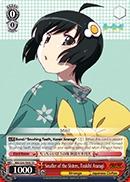 Smaller of the Sisters, Tsukihi Araragi - NM/S24-TE08 - TD