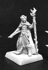 Aravashniel, Elf Wizard (60139)