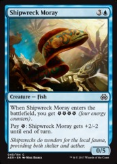Shipwreck Moray - Foil on Channel Fireball