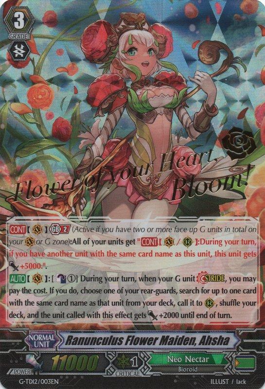 Ranunculus Flower Maiden, Ahsha - G-TD12/003EN - SP