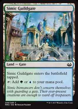 Simic Guildgate - Foil