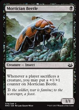 Mortician Beetle