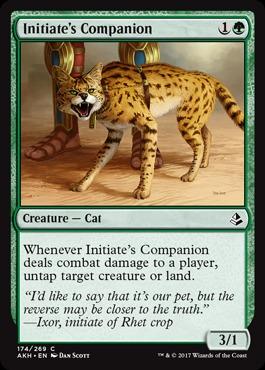 Initiates Companion - Foil