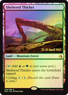 Sheltered Thicket - Foil - Prerelease Promo