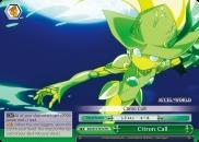 Citron Call - AW/S18-TE14 - TD