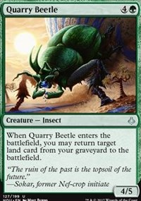 Quarry Beetle - Foil