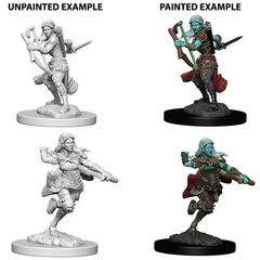 D&D Unpainted Minis - Air Genasi Female Rogue