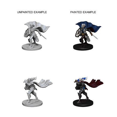 Pathfinder Battles Unpainted Minis - Elf Female Paladin