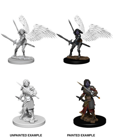 Nolzurs Marvelous Miniatures - Aasimar Female Paladin