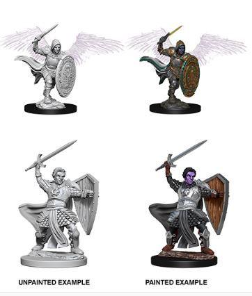 Nolzurs Marvelous Miniatures - Aasimar Male Paladin